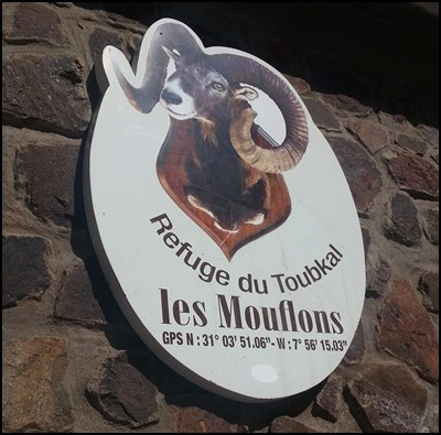 Les Mouflons Refuge du Toubkal