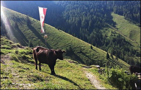 Mariandlalm mit Tirolflagge