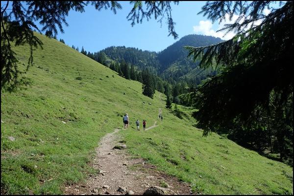 Almwiesen im Trockenbachtal