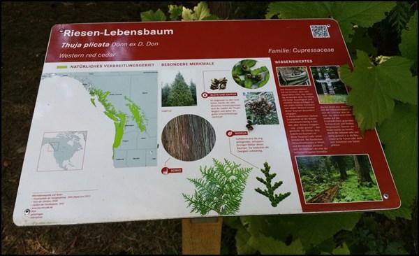 Erkläungstafel im Weltwald bei München