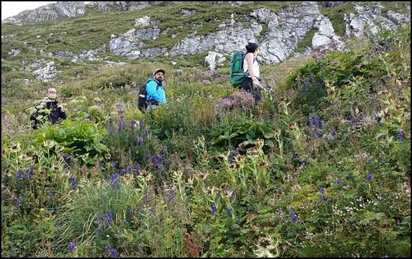 Wanderer im Bregenzerwald