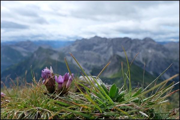 Gipfel Hochkünzelspitze