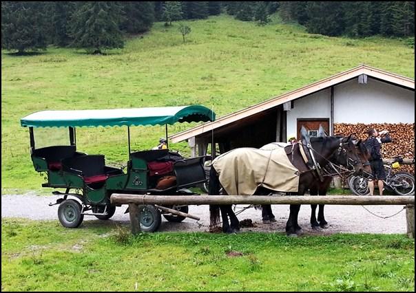 Tegernsee Kutsche Schwarzentennalm