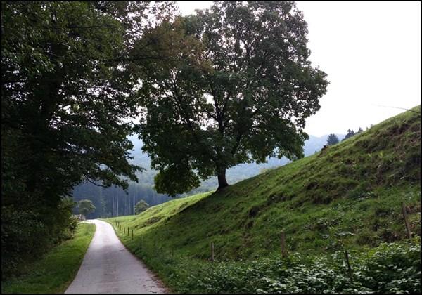 Holzham bei Altenbeuern im Chiemgau