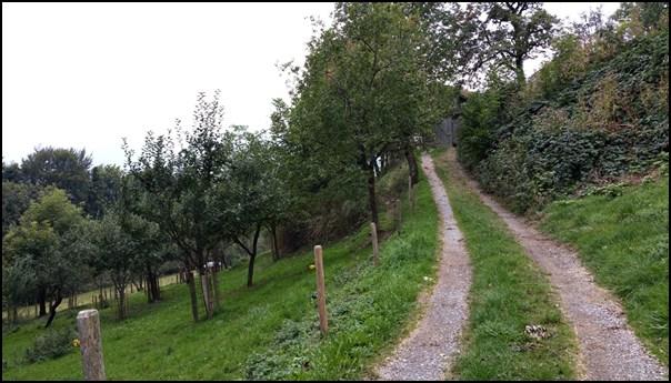 Biken im Chiemgau Samerberg Runde