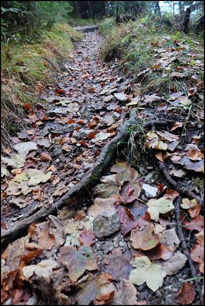 Wanderung zur Scheinbergspitze