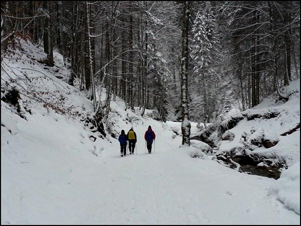 Abstieg von der Lenggrieser Hütte