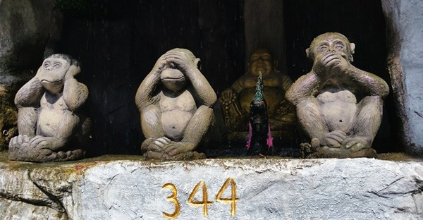 3 Affen in Bangkok