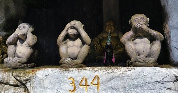 3 Affen in Bangkok