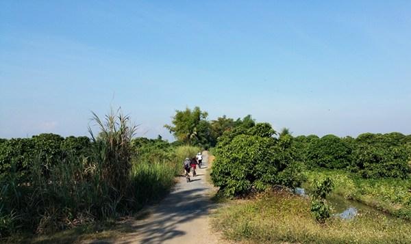 Mit dem Mountainbike durch den Mae Wang Nationalpark