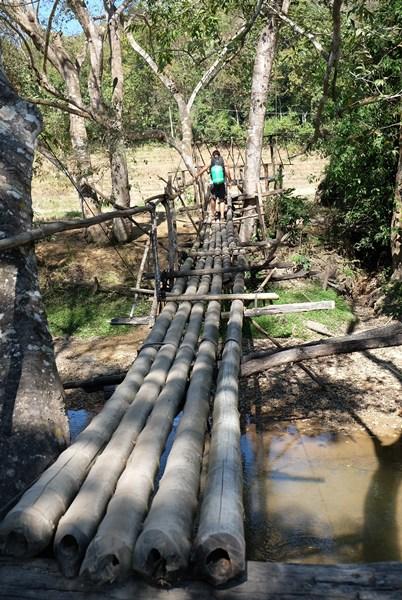 Und kurz nach der Brücke ist die Wanderung auch schon vorbei...
