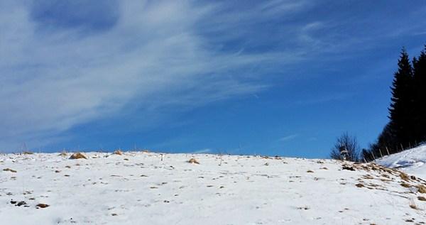 Winterwonderland an der Chiemgauer Hochplatte