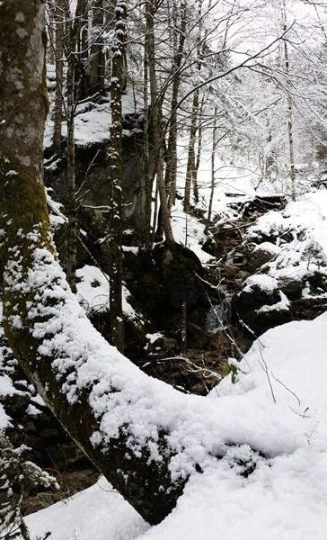 winterwandern bei Ruhpolding