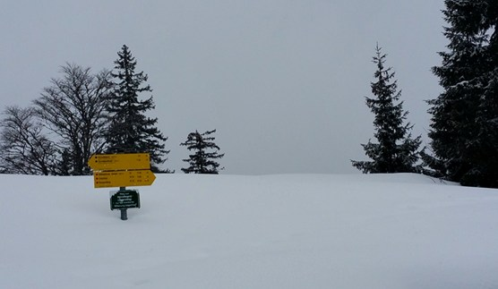 Winterlandschaft auf der Hörndlalm