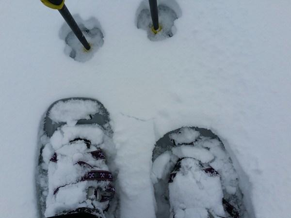 Schneeschuh-Tage