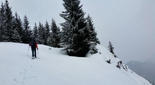 mit Schneeschuhen Richtung Sulzgrabenkopf