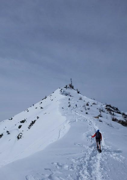 Endspurt zum Jenner. Der Mast ist allerdings nicht das Gipfelkreuz, lediglich die Aussichtsplattform.