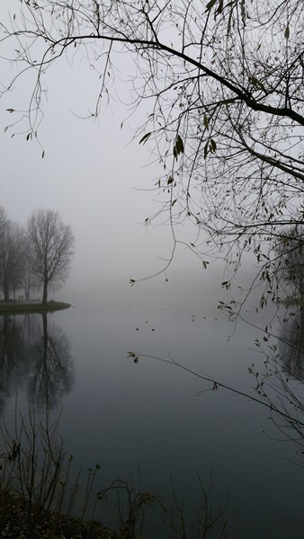Olympiapark im Nebel