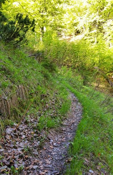 Steiler Weg zum Hausgrabenkopf