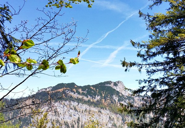 Blick zum Nachbarberg, dem Dürrnbachhorn