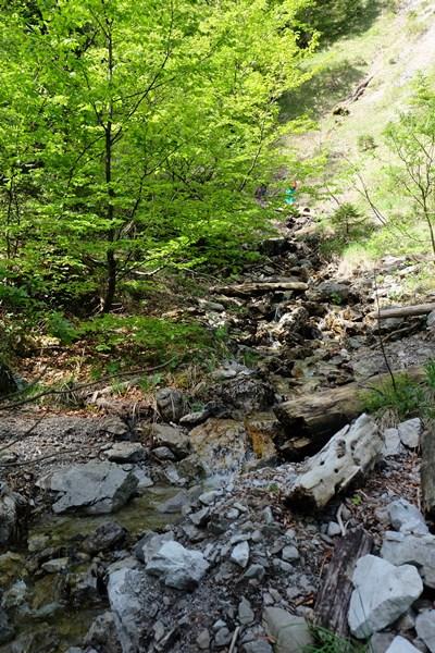 Wandern am Bach entlang