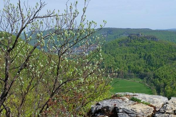 Aussicht für Geübte. Mit Tal, Burg und deutlichen Anzeichen von Frühling