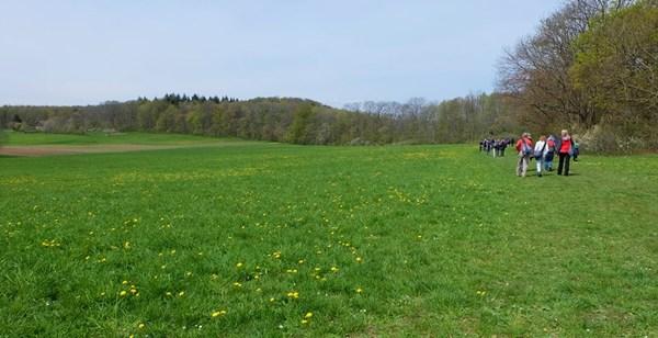 """Bequem zu gehen, """"oben"""" auf dem Plateau der Schwäbischen Alb"""