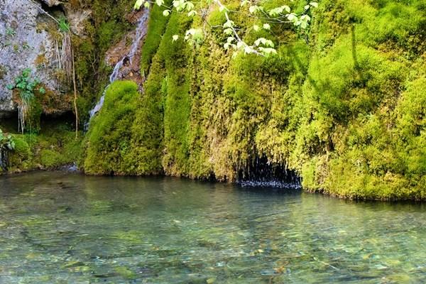 Verwunschene Felsen am Gütersteiner Wasserfall