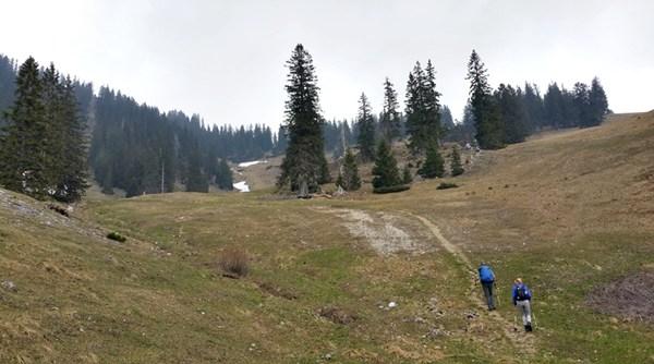Windiger Weg auf der ehemaligen Skipiste am Rauschberg