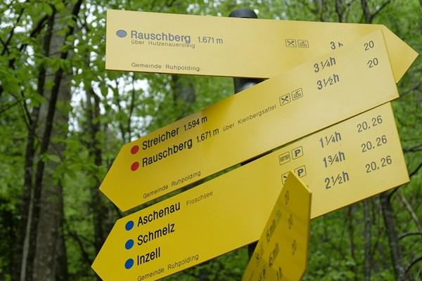 Schilderwald im Wald bei Ruhpolding