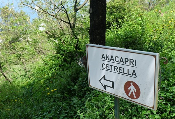Vom Monte Solaro nach Capri