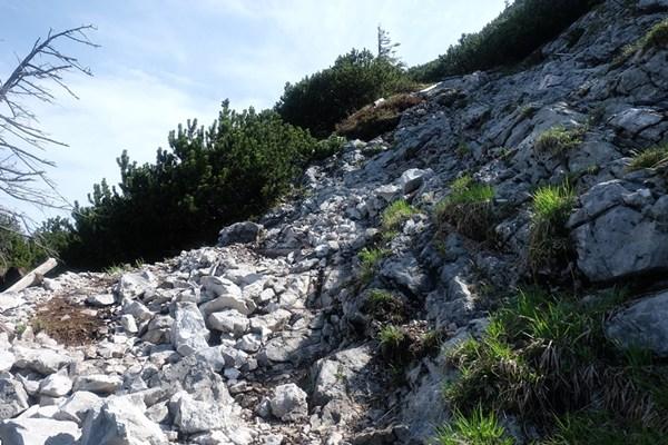 Steiniger Weg zum Gamsknogel