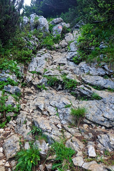 Steilere Stelle an der Benediktenwand