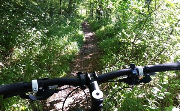 So lernt man Trails fahren