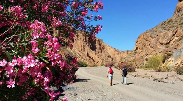 Ramblas de los Yesos – eine Canyon-Wanderung in der spanischen Sierra Nevada