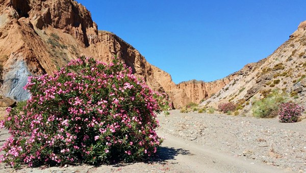 Was für ein erster Eindruck! Die Ramblas de los Yesos in der Sierra Nevada.
