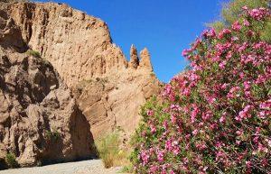 Wanderung Sierra Nevada Spanien