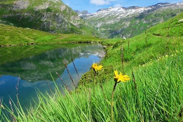 See am Salzboden