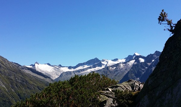 Blick über die Zillertaler Alpen