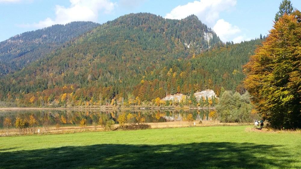Ein Lieblingsort - der Weitsee im Herbst
