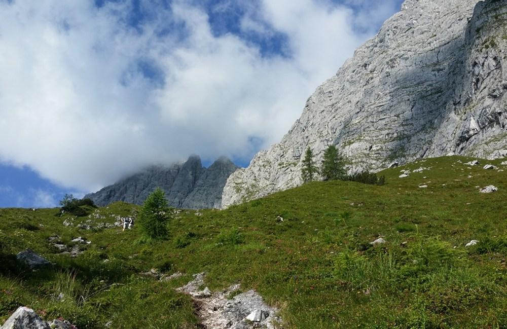 Auf der Hochalm (ca 1.500m)