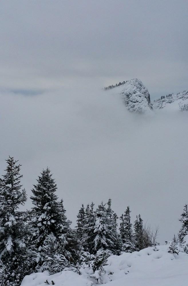 Der Rauschberg verschwindet im Nebel.