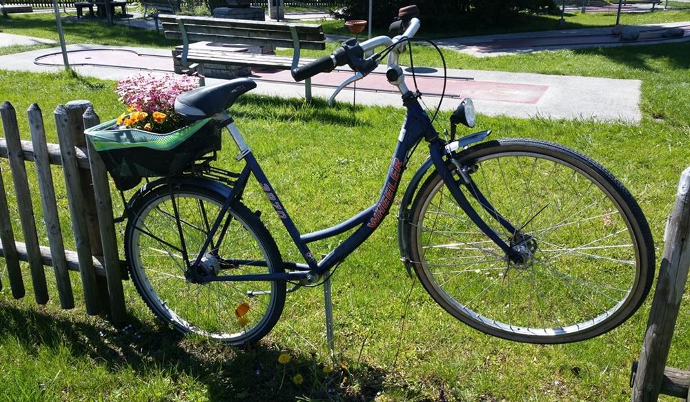 Fahrrad-Zaun in Chieming