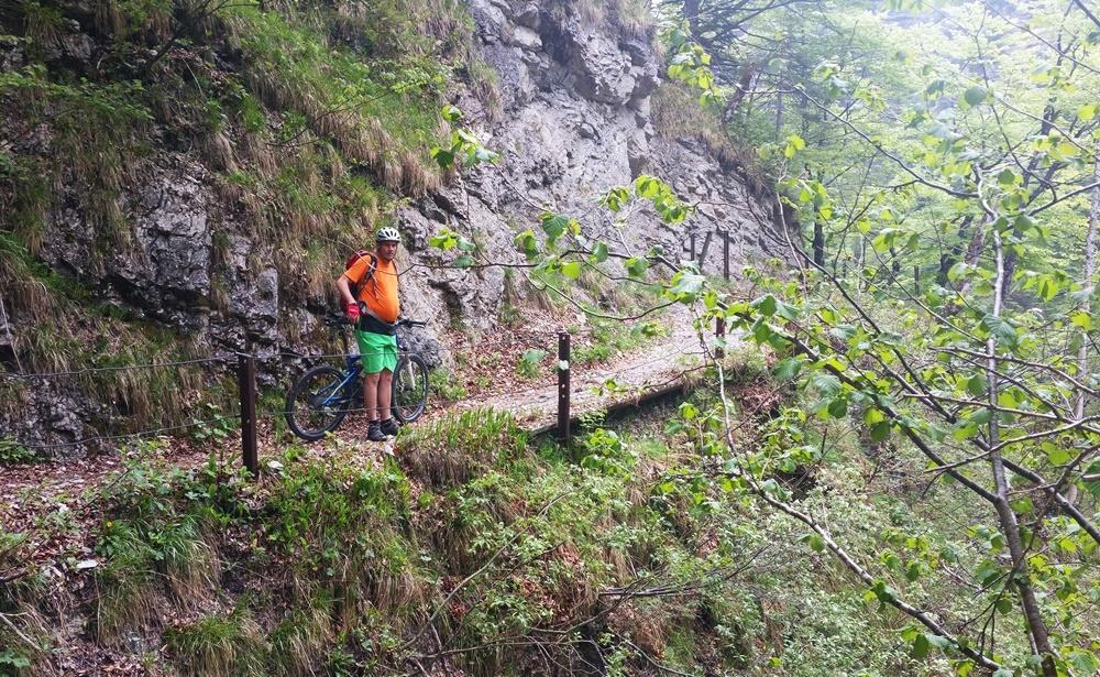 Ein schmaler Weg führt zum Wasserfall.