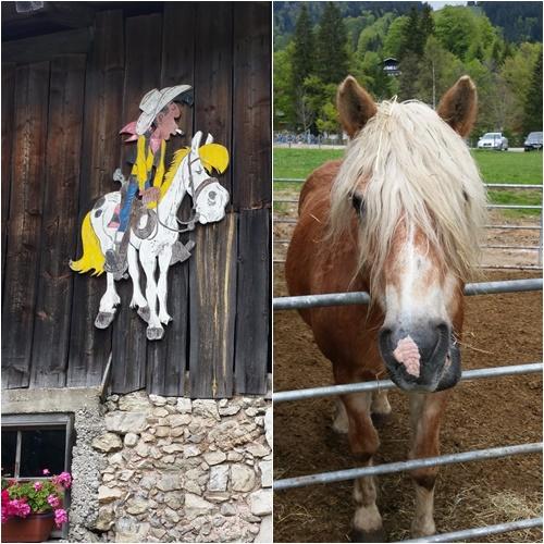 Lucky Luke und Pferd im Heutal, auf dem Weg zur Winklmoos-Alm