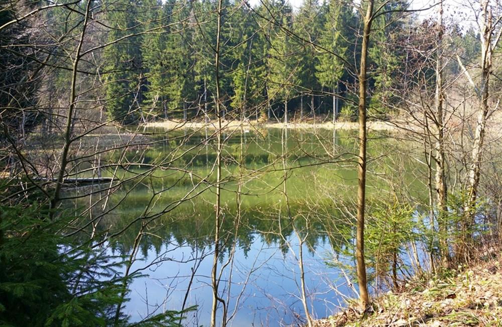 Zinnkopfsee
