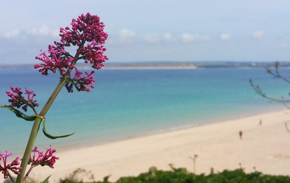 Strand bei St. Ives, vom Bahnhof aus gesehen | Cornwall, England