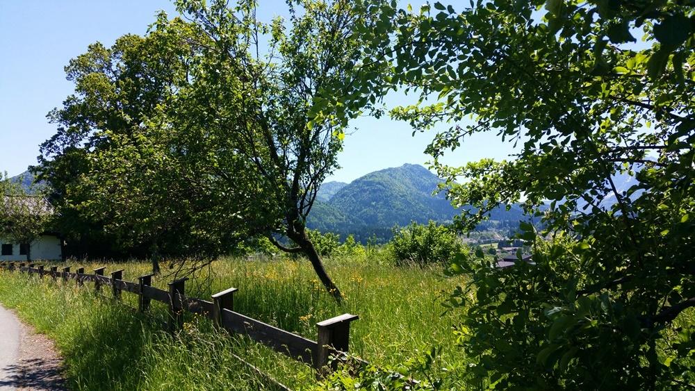 In der Nähe von Kössen mit dem Mountainbike.