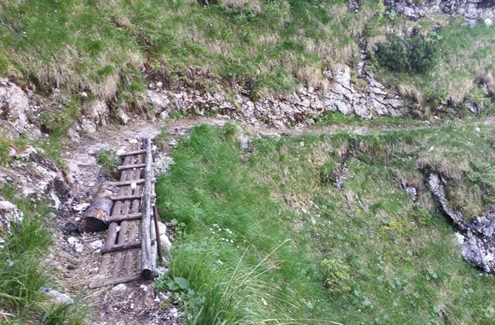 Holzbrücke auf dem Waxriessteig Richtung Hochschlegel