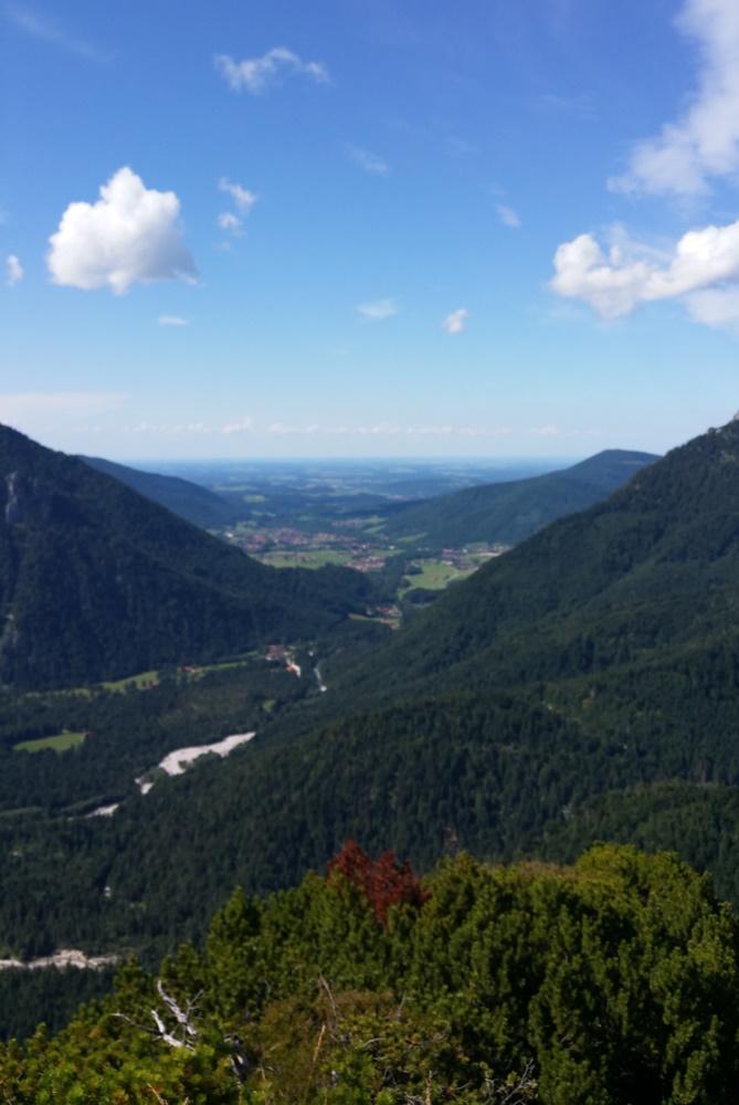 Adlerkopf im Chiemgau